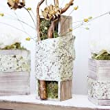 Rustic Whitewash Wood Planter Box with Plastic Liner, 12 x 4 Inch Rectangle