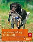 Hundeausbildung für die Jagd: Schritt für Schritt zum zuverlässigen Jagdhund