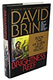 Brightness Reef: (Bantam Spectra Book) (0553100343) by Brin, David