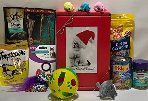 christmas-holiday-cat-gift-box-basket-for-a-favorite-feline-fur-baby-send-these-treats-and-toys-to-a