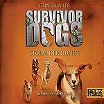 Sturm der Hunde (Survivor Dogs 6) | Erin Hunter