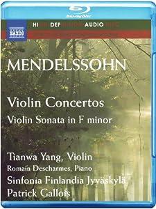 Violin Concertos in E Minor O