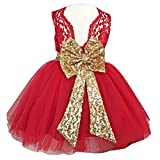 Lace Formal Sequins Flower Girl Dress for Girl Party Pageant Dresses Clothes Clothing Kids Knee Mid A Line Tulle Blush Size 3t Summer Sundress (Red, 110) (Color: Red, Tamaño: 3T)