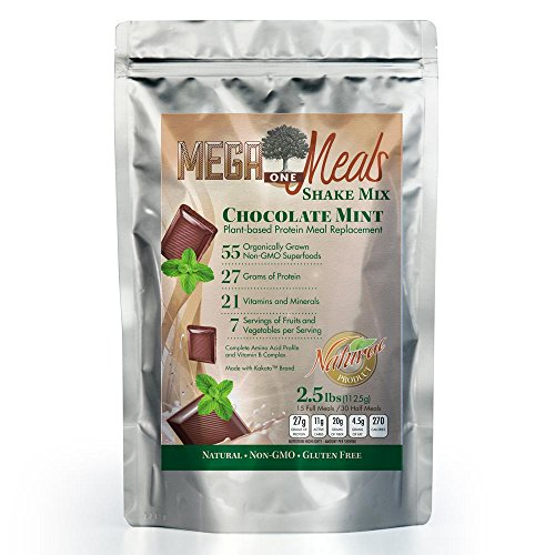 MegaOne Chocolate Mint Meal Replacement Shake Powder - Great Taste Vegetarian Protein - Hunger Control, Energy, Diet Weight Loss, Hiking, Workout - With Fermented Superfoods (Profile Weight Loss compare prices)