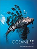 img - for Ocean Life by Morgan, Sally, Lalor, Pauline (2001) Paperback book / textbook / text book