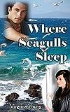 img - for Where Seagulls Sleep book / textbook / text book