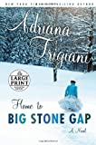 Home to Big Stone Gap (0739326813) by Trigiani, Adriana