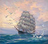 Perfect Effect Canvas ,the Reproductions Art Decorative Prints On Canvas Of Oil Painting 'Seascape Of A Sailing Ship And Sea Gulls', 8x9 Inch / 20x22 Cm Is Best For Dining Room Decor And Home Decoration And Gifts