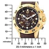 Nautica Men's N18522G NST Chronograph Watch