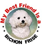 2 Bichon Frise Car Stickers My Best Friend Design No 1