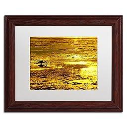 Trademark Fine Art Gold Digger Artwork by Beata Czyzowska Young, 11 x 14\