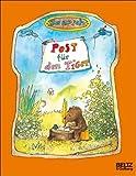 Post für den Tiger: Die Geschichte, wie der kleine Bär und der kleine Tiger die Briefpost, die Luftpost und das Telefon erfinden (MINIMAX) title=