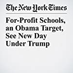 For-Profit Schools, an Obama Target, See New Day Under Trump | Patricia Cohen