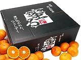 愛媛県産 みかん柑橘類 温州みかん 蜜る 5キロ 特秀 SSサイズ 産地直送 11/20より発送開始