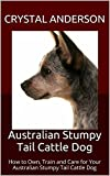 Australian Stumpy Tail Cattle Dog: How to Own, Train and Care for Your Australian Stumpy Tail Cattle Dog