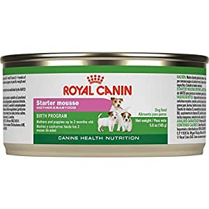 Royal Canin Starter Mousse For Mother And Baby Dog Canned
