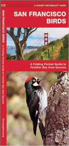 San Francisco Birds: A  Folding Pocket Guide to Familiar Bay Area Species (Pocket Naturalist Guide Series)