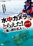 水中カメラはとらえた! 魚VS釣り名人 カワハギ編 [DVD]