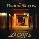 Cool Me Down - Black Seeds
