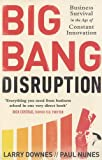 img - for Big Bang Disruption: Business Survival in the Age of Constant Innovation book / textbook / text book