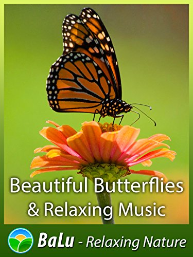 Beautiful Butterflies & Relaxing Music