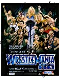 wwe.wrestlemania 12