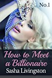 How to Meet A Billionaire: Part 1: A BBW Erotica (Billionaire Series)