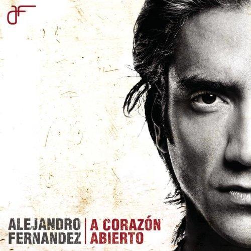 Alejandro Fernandez - Si Alguna Vez Lyrics - Zortam Music
