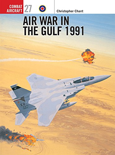 Air War in the Gulf 1991 (Combat Aircraft)