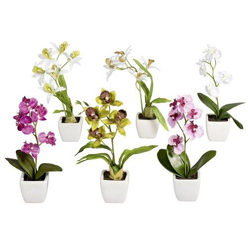 6-mini-plantes-artificielles-orchidee-phalaenopsis-orchidee-en-pot-blanc-18-cm-differents-coloris-fl