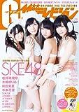 グラビア ザ テレビジョン Vol.25