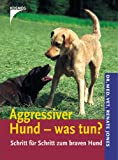 Aggressiver Hund - was tun?