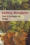 Das Schweigen im Walde: Historischer Roman - Ludwig Ganghofer