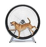 GoPet CS6020 Indoor/Outdoor Treadwheel for Medium and Large Dogs