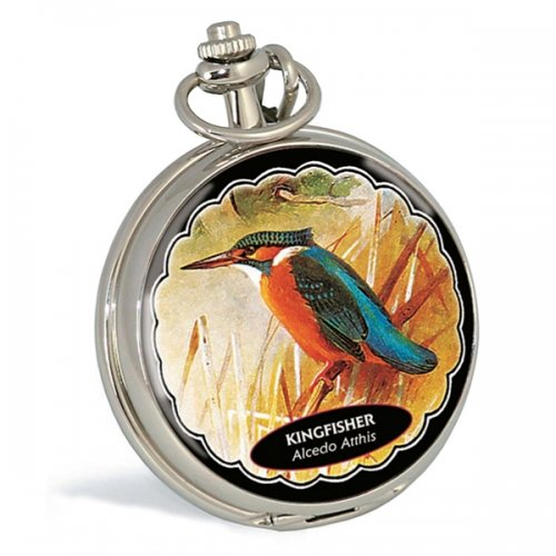 ravel-silver-coloured-pocket-watch-with-kingfisher-on-front-cover
