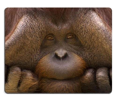 monkey-ape-chimpanzee-face-closeup-animal-mouse-pads-customized-made-to-order-support-ready-9-7-8-in