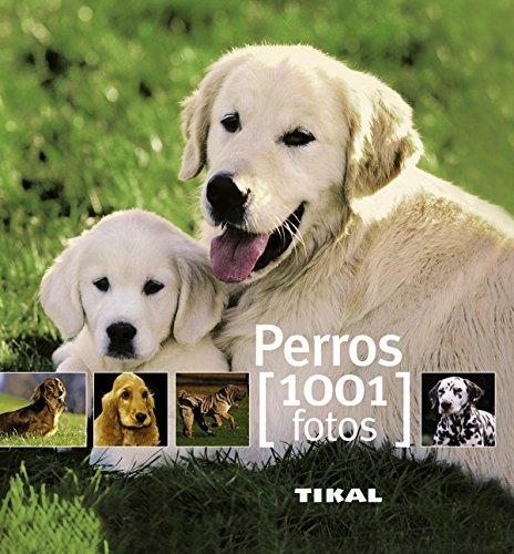 Perros (1001 Fotos)