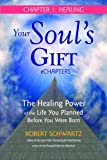 Your Souls Gift eChapters - Chapter 1: Healing: The Healing Power of the Life You Planned Before You Were Born