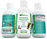 EXTRA STRENGTH Liquid Glucosamine For Dogs & Cats Also Contains Chondroitin, MSM & Grape Seed Extract (16 Fl. Oz.) ♥ Best Natural Anti-Inflammatory Nutritional Pet Supplements ♥ Can Help With Feline & Canine Arthritis, Joint Pain & Hip Dysplasia Relief, Cartilage Repair, & Skin/Coat Disorders ♥ Made In The USA