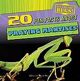 20 Fun Facts About Praying Mantises (Fun Fact File)
