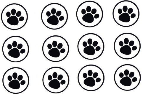 25 Clear Paw Print Large Envelope Seals