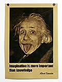 ポスター アルベルト・アインシュタイン 舌 アインシュタイン Imagination is more important than knowledge Albert Einstein B3サイズ SE01