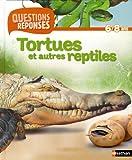 Tortues et autres reptiles