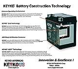 12V 9Ah SLA Sealed Lead Acid AGM Genuine KEYKO ® Rechargeable Battey (W/ F-2 Terminal) - 2 Batteries