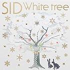 Whitetree(�������������A)