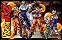 Dragon Ball Z - Group by Unknown 34.00X22.00. Art Poster Print