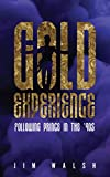 img - for Gold Experience: Following Prince in the  90s book / textbook / text book