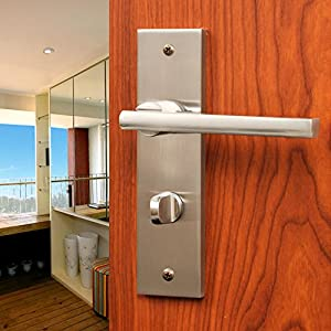 Chinese Modern High End Fashion House Door Locks Brushed