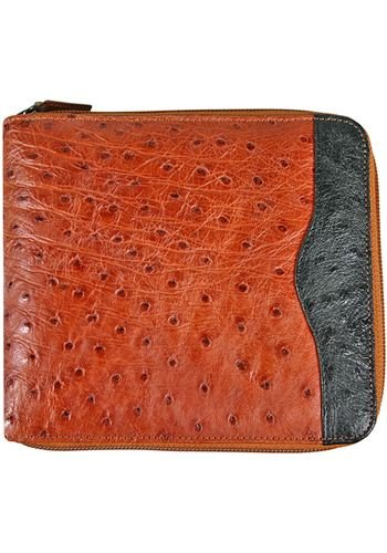 Peanut CD Holder - Genuine Ostrich Skin Leather