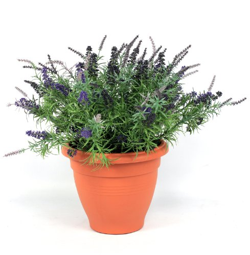 Artificial Lavender Patio Planter Arrangement with Plastic Terracotta Pot Planter - Great for Gardens and Home - Blooming Artificial